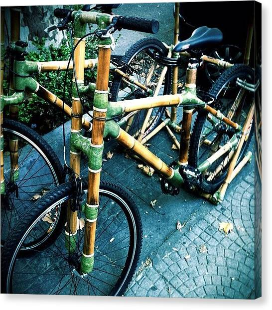 Argentinian Canvas Print - Bamboo Bike #popular #argentina by Martin Endara