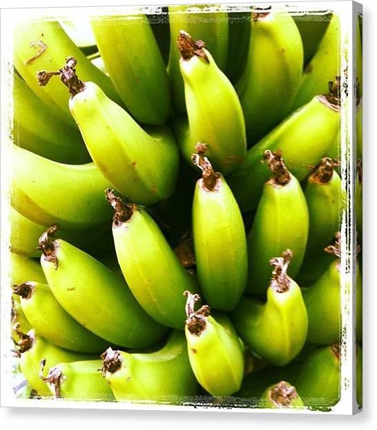 Bananas Canvas Print - #banana #fruit #iphonephoto by Avatar Pics