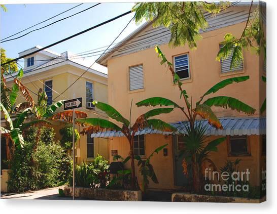 Banana Tree Canvas Print - Banana Tree Lane In Key West by Susanne Van Hulst