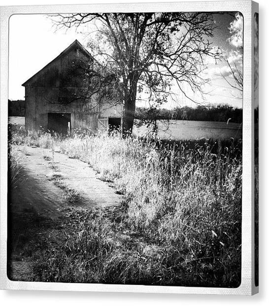 Dirt Road Canvas Print - #barn #abandoned #b/w #ohio #horses by Dayna Wilson
