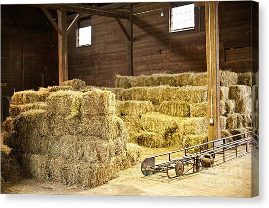 Hay Bales Canvas Print - Barn With Hay Bales by Elena Elisseeva