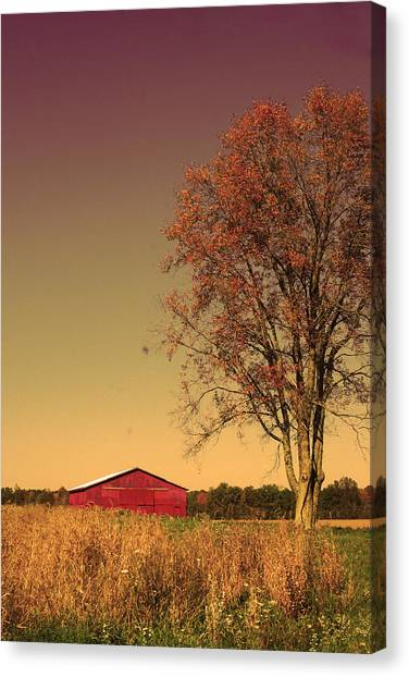 Barn Wood Canvas Print