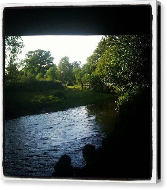 Tongue Canvas Print - #barney #dog #devon #water #river by Dave Harris