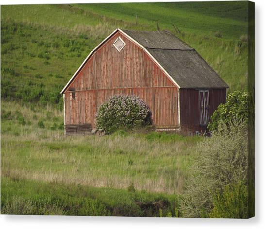 Barns Of The Palouse 6 Canvas Print by Tony and Kristi Middleton