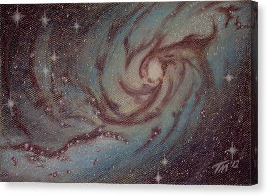 Barred Spiral Galaxy Ngc 1313 Canvas Print by Thomas Maynard