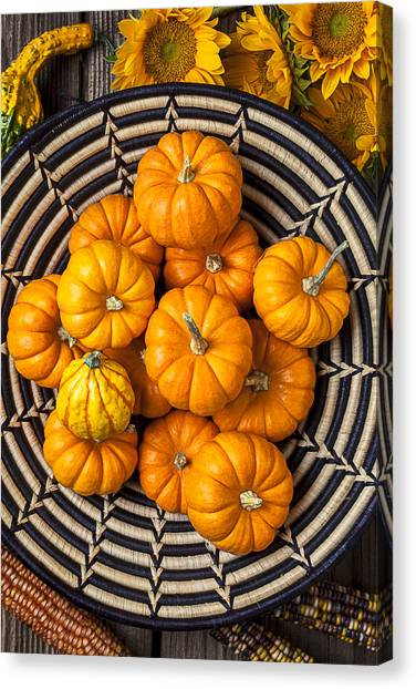 Indian Corn Canvas Print - Basket Full Of Small Pumpkins by Garry Gay