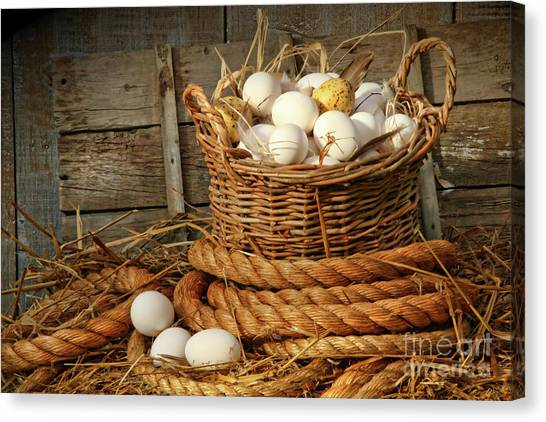 Easter Baskets Canvas Print - Basket Of Eggs On Straw by Sandra Cunningham