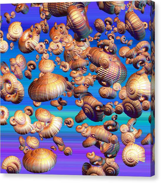 Conch Shells Canvas Print - Basket Snails In The Sky by Betsy Knapp