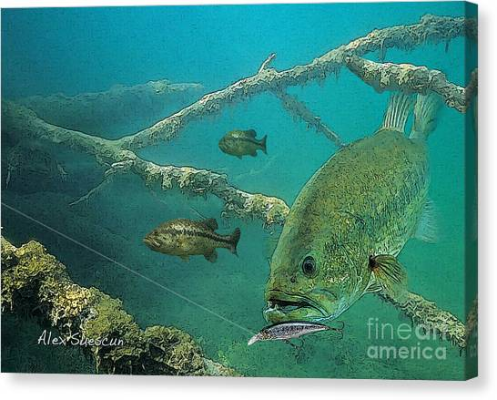 Bass Ambush Canvas Print