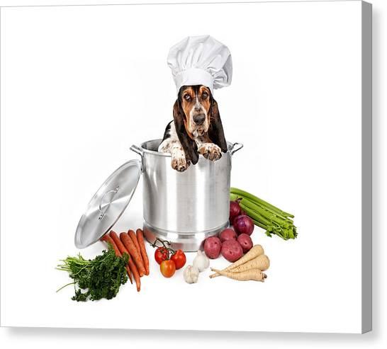 Basset Hound Dog In Big Cooking Pot Canvas Print by Susan Schmitz