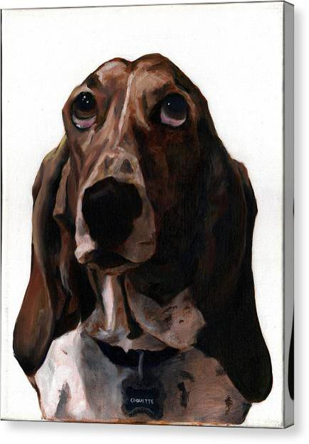 Basset Hound Named Coquette Canvas Print