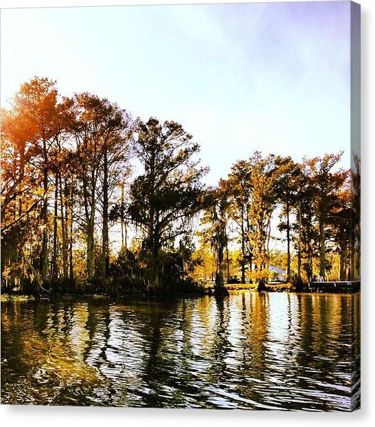 Bayous Canvas Print - #bayou #louisianatravel #louisiana by Sonjia  Kiffe