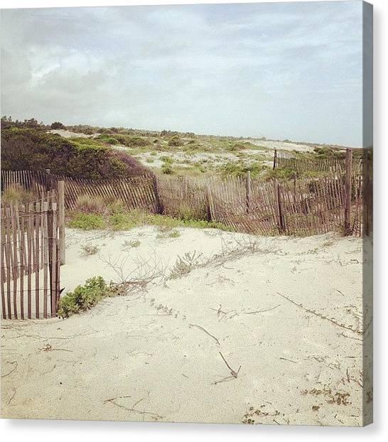 Marijuana Canvas Print - #beach #sand #jacksonville #jonspics by Jonathan Bouldin