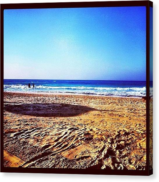 Swimming Canvas Print - #beach #sea #summer #instadaily by Mina Tadros