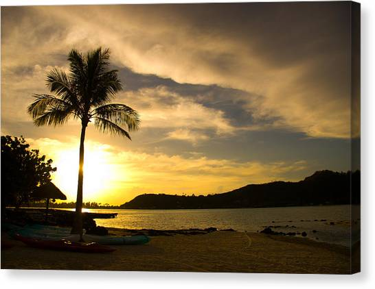 Beach Sunset With Bora Bora Palm Canvas Print by Benjamin Clark