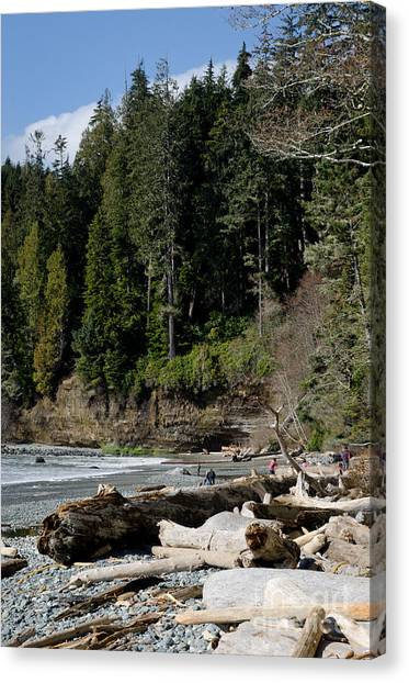 Juan De Fuca Provincial Park Canvas Print - Beached Logs China Beach Vancouver Island Bc by Andy Smy