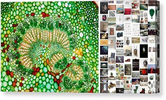 Beads Of Green Canvas Print