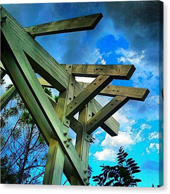 Everglades Canvas Print - Beams / Sky by Elisa Franzetta