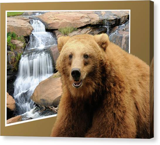 Bear Out Of Frame Canvas Print