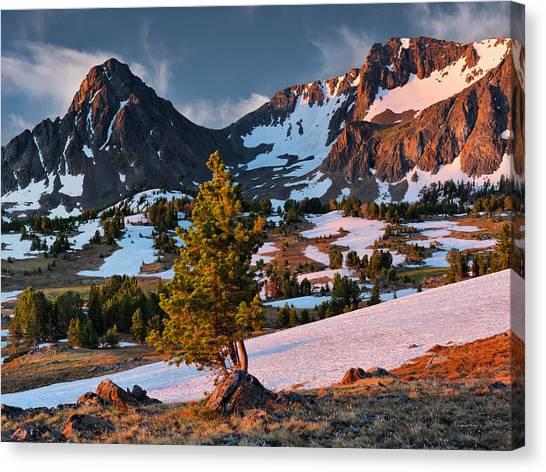 Beartooth Sunrise Light Canvas Print by Leland D Howard