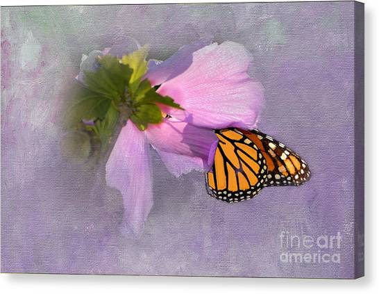Althea Canvas Print - Beautiful In Pink by Betty LaRue