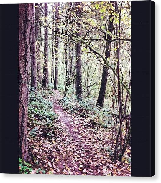 Pathway Canvas Print - Beautiful Morning To Go For A Walk by Karen Clarke
