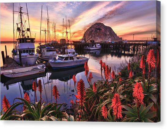 Beautiful Morro Bay Canvas Print