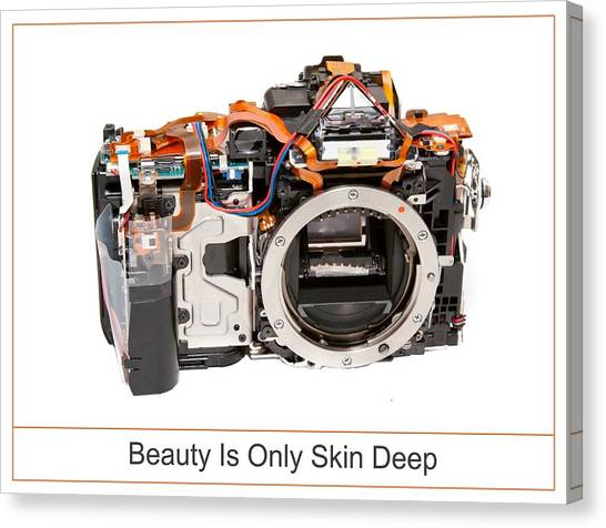 Beauty Is Only Skin Deep Canvas Print