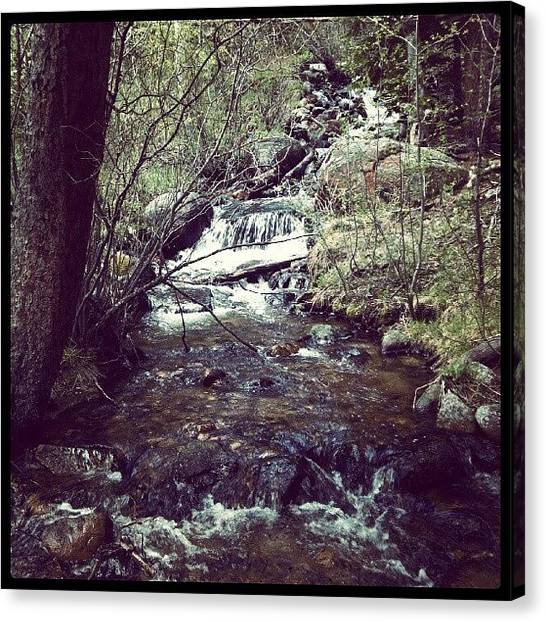 Wilderness Canvas Print - Beauty by Kenny Kerns
