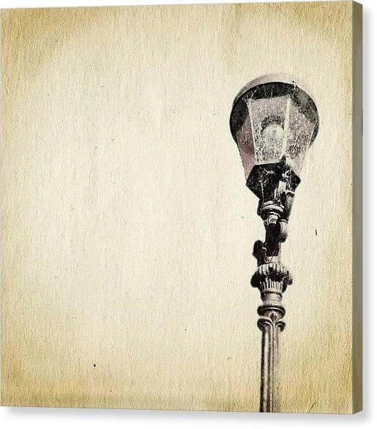 Storks Canvas Print - Beauty Of Simplicity by Melanie Stork