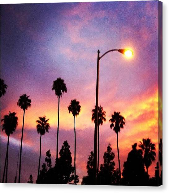 Palm Trees Sunsets Canvas Print - #beauty #sky #pink #purple #light by Crystal Peterson