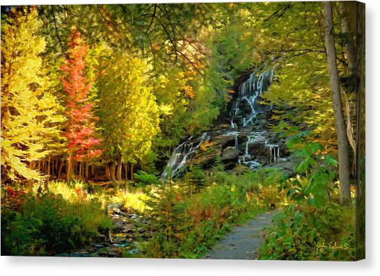 Beaver Brook  Canvas Print