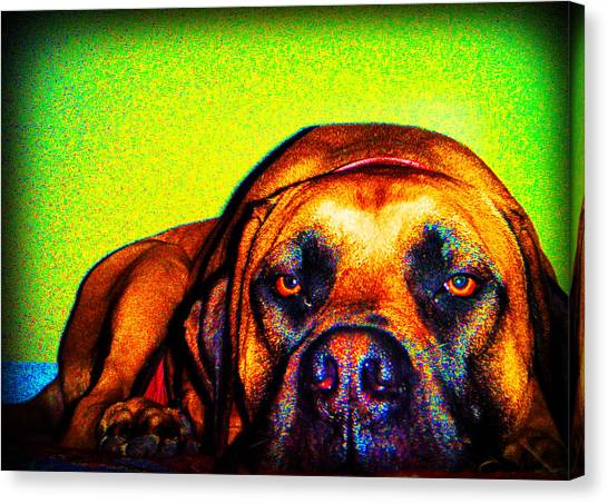 Beefy Girl In Bright Colors Canvas Print