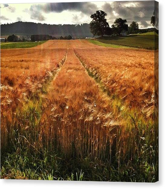Swiss Canvas Print - Before The Rain by Urs Steiner