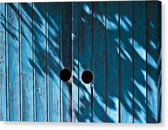 Behind  Blue Doors Canvas Print by Tal Richter