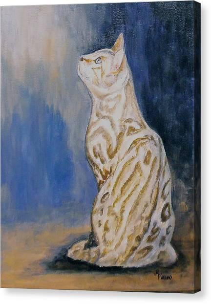 Ben The Snow Bengal Canvas Print