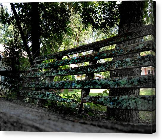 Gaston County Canvas Print - Benched by Tammy Cantrell