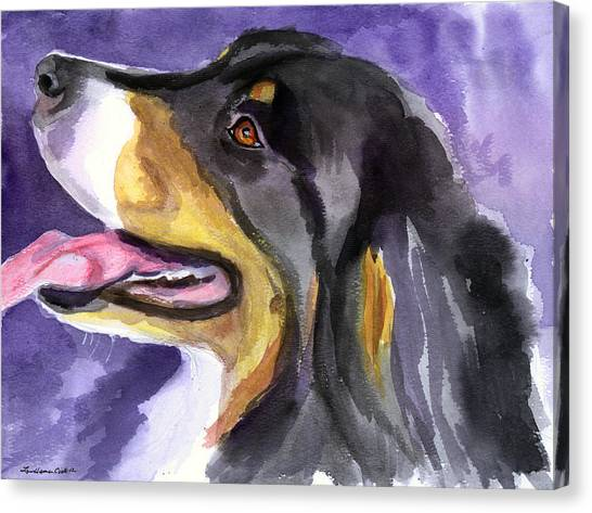Bernese Mountain Dogs Canvas Print - Berner Portrait by Lyn Cook