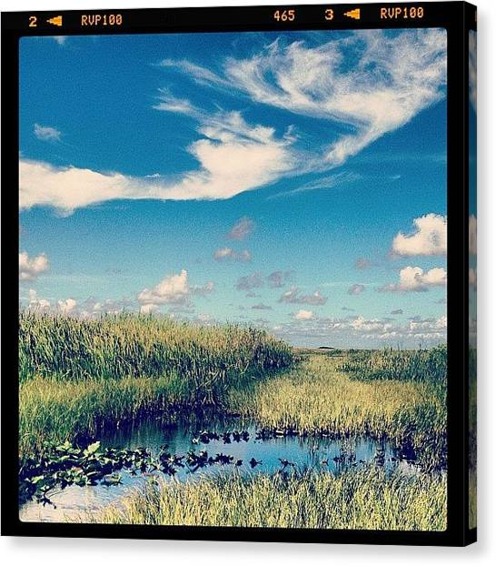 Everglades Canvas Print - Best Time Everrr. #everglades by Cortney Herron