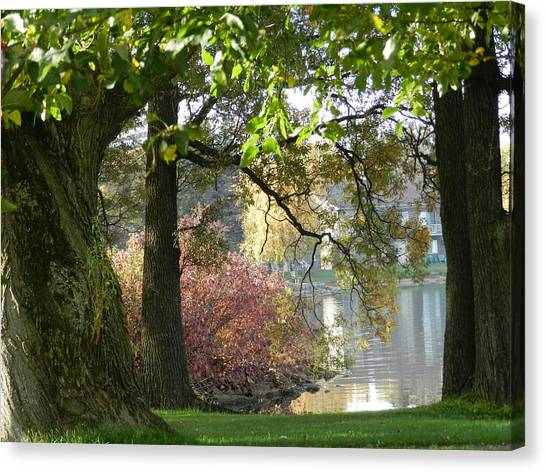 Between The Trees Canvas Print by Dennis Leatherman