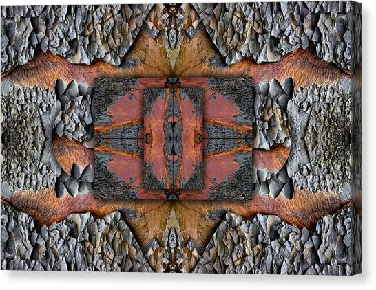 Geology Canvas Print - Between Tides Number 1 by Carol Leigh