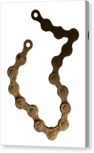 Bicycle Chain Canvas Print by Tony Cordoza
