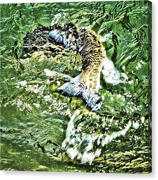Happy Birthday Canvas Print - Big Splash by Jason Thueson