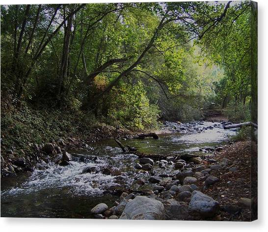 Big Sur River Canvas Print