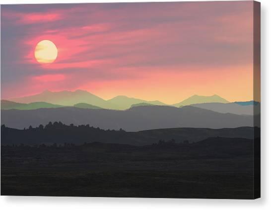 Bighorns At Sunset Canvas Print