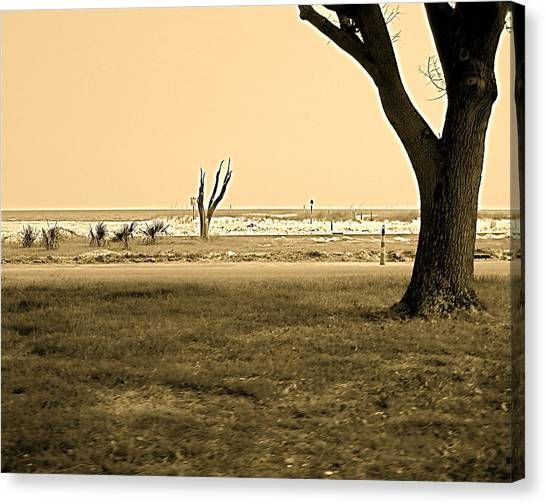 Biloxi Coast Canvas Print
