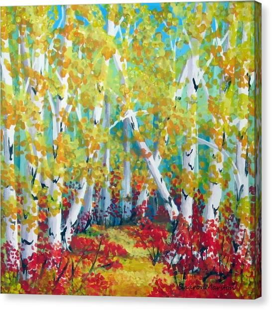 Birches In Autumn Canvas Print by Sharon Marcella Marston