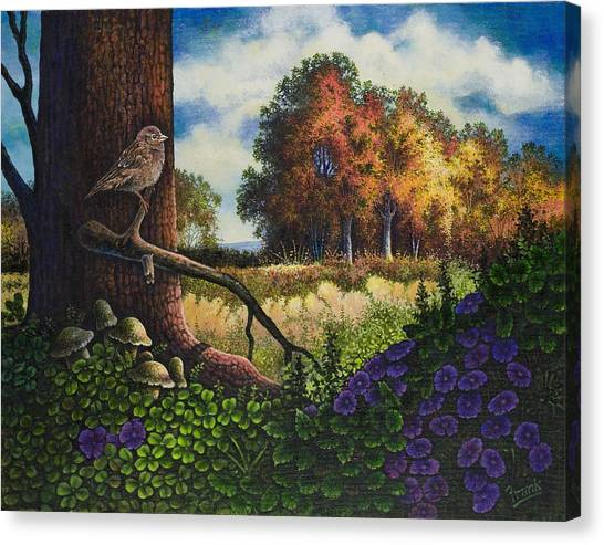 Bird In Paradise II Canvas Print by Michael Frank