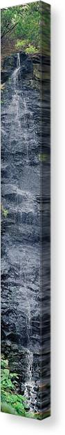 Bird Park Waterfall Canvas Print by Miguel Capelo