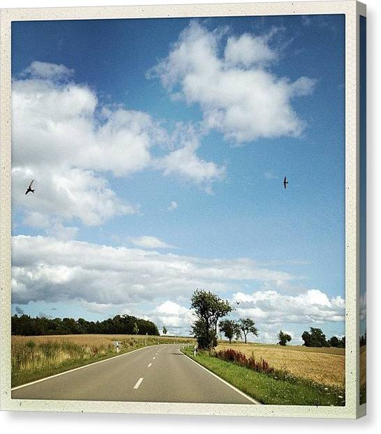 Storks Canvas Print - Bird's Along My Way by Melanie Stork